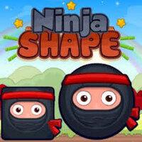 Ninja Shape Play