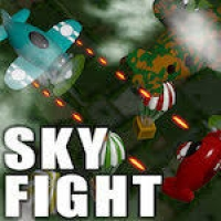 Sky Fight Play